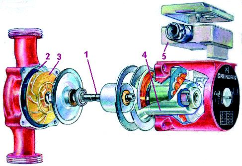 Конструкция циркуляционного насоса