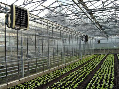 Prix chaudiere gaz basse temperature de dietrich societe renovation beziers - Chaudiere basse temperature prix ...