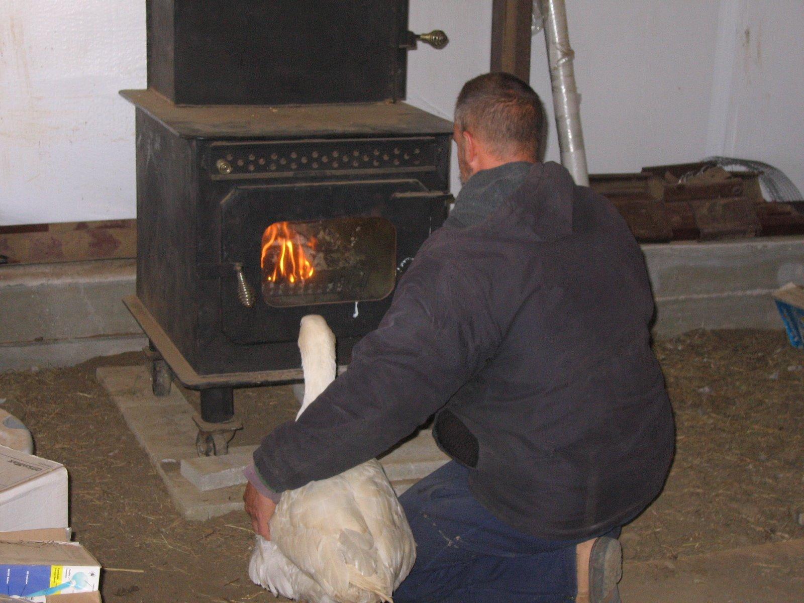 Установить железную печь в бане своими руками